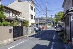 Nara street scene
