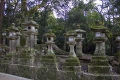 The path to Kasuga-taisha Shrine, Nara Park