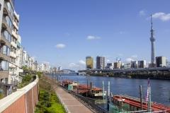 Sumida River park, Taito, Tokyo