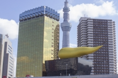 Tokyo Skytree as seen from Sumida River park, Taito