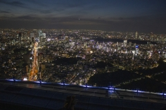 Tokyo at night as seen from the Roppongi Hills Tower
