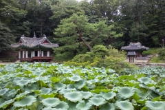 Huwon secret garden, Changdeokgung Palace, Jongno-gu