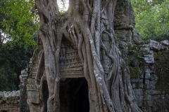 A doorway crushed by the weight of time (and a tree) at Ta Som Temple, Angkor complex, Cambodia